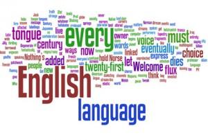 ingilizce özel ders