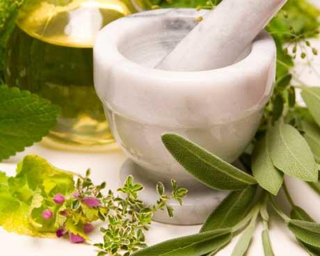 bitkisel-tedavi-panax